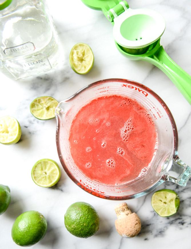 watermelon-pops-I-howsweeteats.com-1